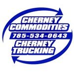 Cherney Enterprises, LLC.  logo