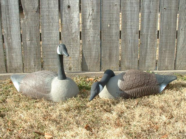 Goose Decoys For Sale >> Goose Decoys For Sale