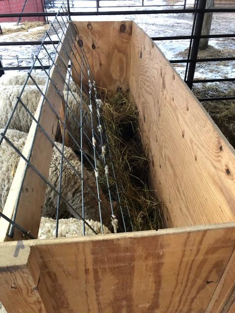 SOLD - Goat-sheep feeders