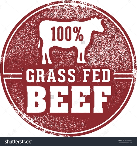 Grass-fed, antibiotic free, non hormone, dexter beef