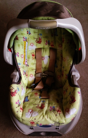 Winnie The Pooh Stroller Infant Car Seat Combo