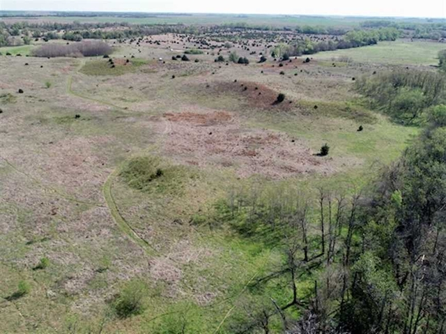 40+/- Acres of Excellent Hunting in Stafford County, Kansas!